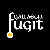 Gallaecia Fugit Escape Room