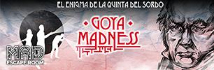 La Locura de Goya