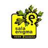 Sala Enigma Basaburua